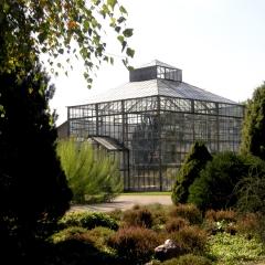 Botanische Anlage
